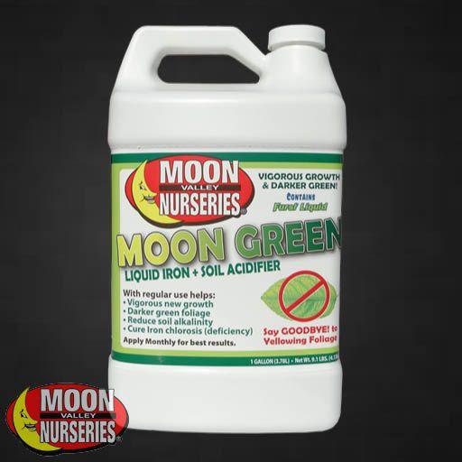 Deals MOON GREEN ™