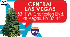 Central Las Vegas image