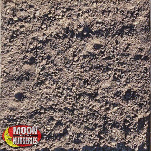 Decorative Rock Fill Dirt