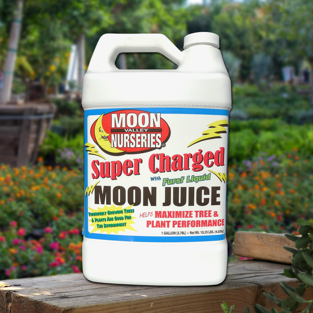 Deals SUPER CHARGED MOON JUICE ™