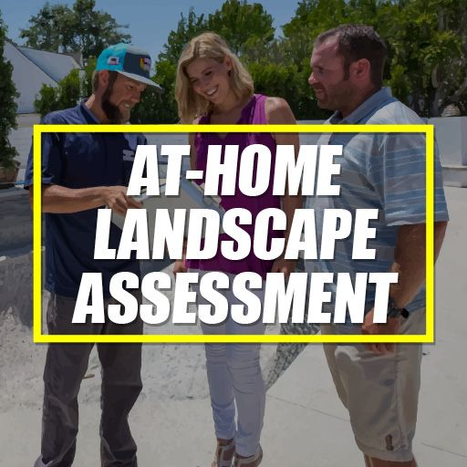 Buy Packages 1-Hour Landscape Assessment Package