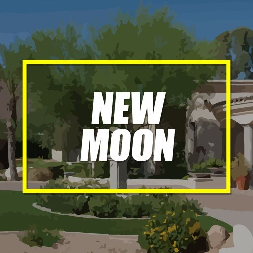 Buy Packages New Moon Pack Houston TX