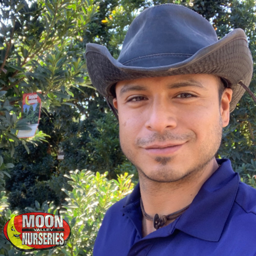 Preguntas en Español? Por favor llama Daniel Ordonez