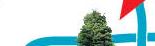 Glendale tree top